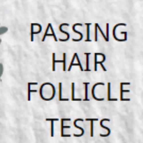 passhairfollicletest