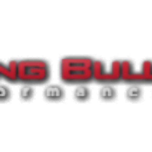 Raging Bull Performance