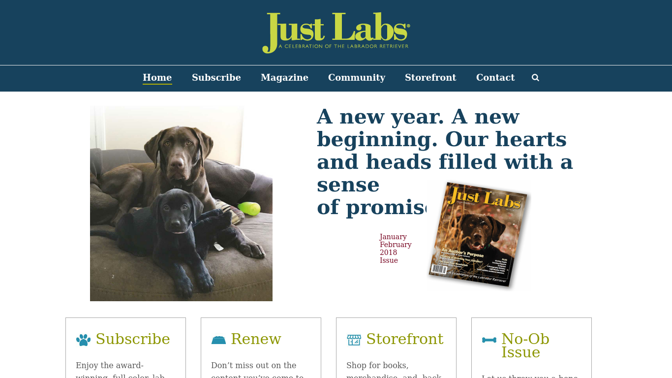 justlabsmagazine.com Screenshotx