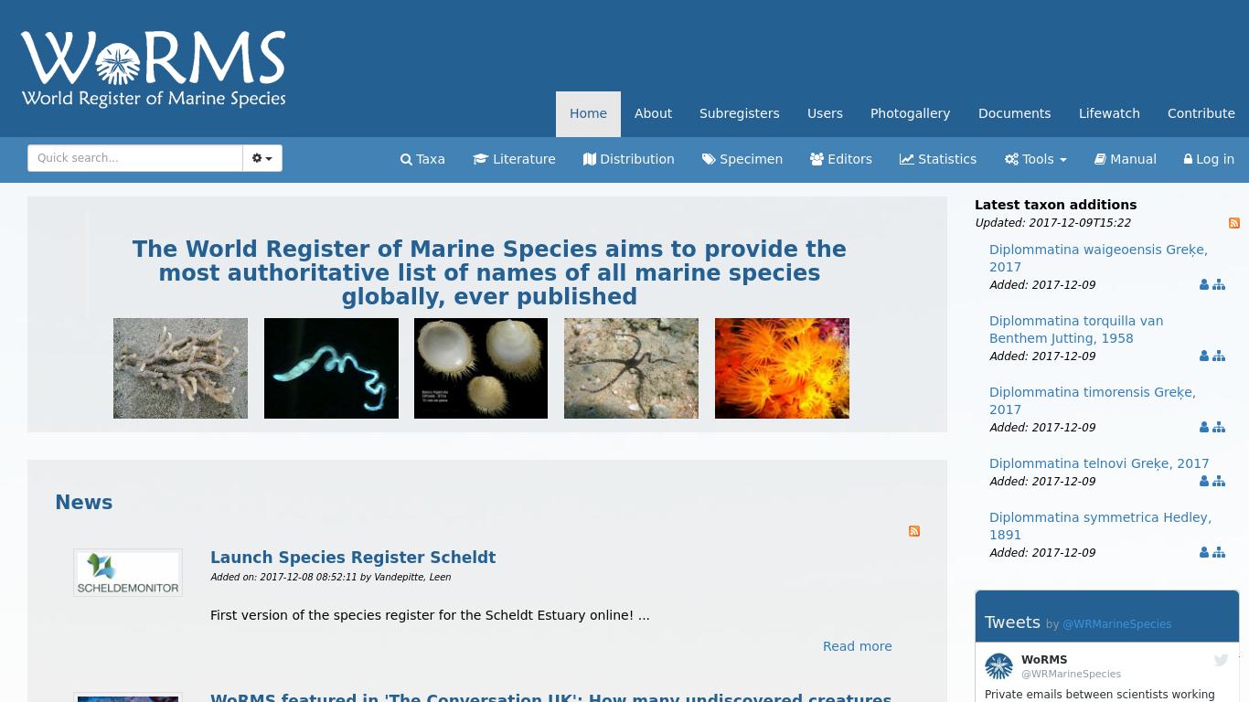 marinespecies.org Screenshotx