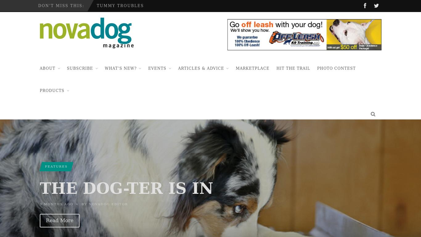 novadogmagazine.com Screenshotx