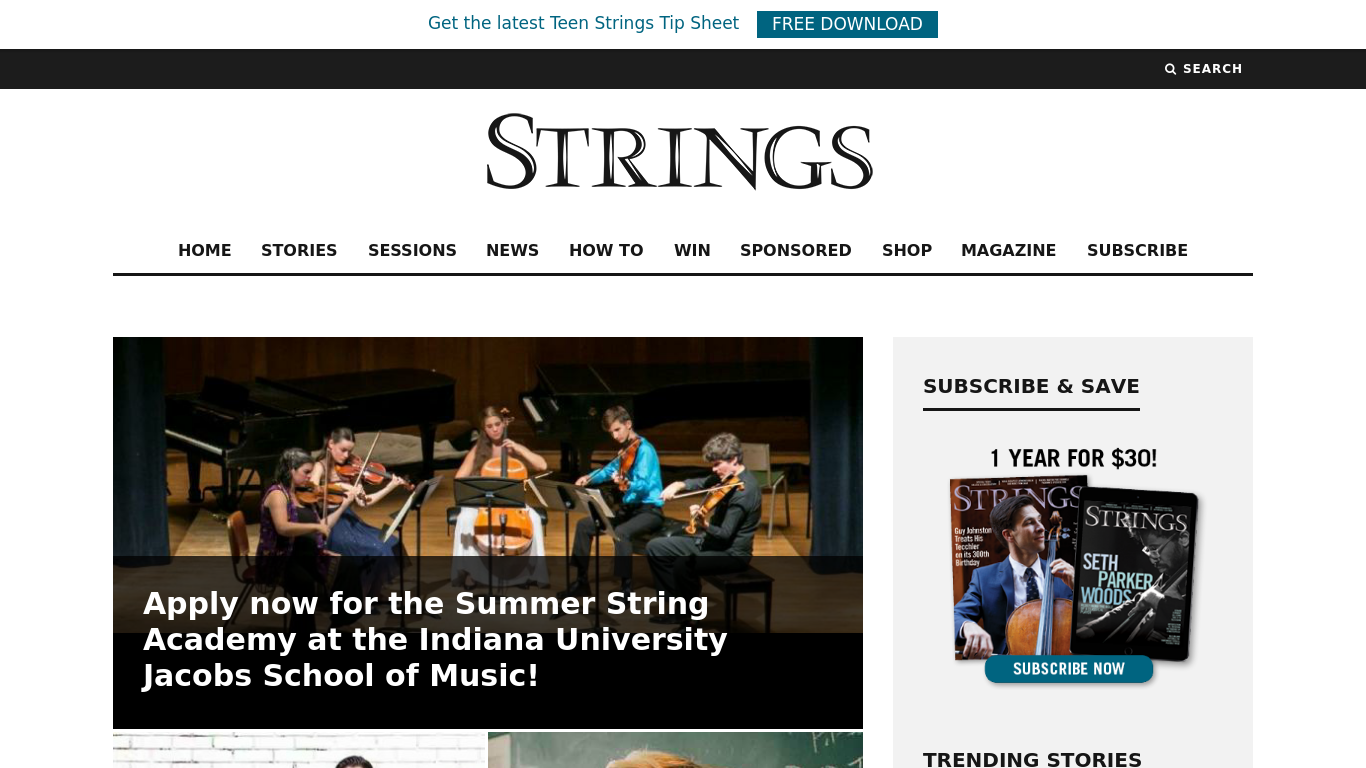 stringsmagazine.com Screenshotx